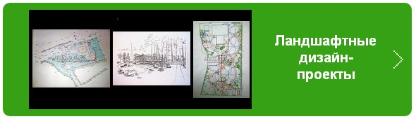 Ландшафтное проектирование (проекты ландшафтного дизайна участков)