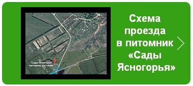 Схема проезда в питомник «Сады Ясногорья»