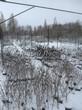 Лиственные кустарники укрытые снегом на торговой площадке уснули до весны (питомник растений, Тульская область)