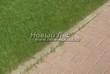 Садовая дорожка из тротуарной плитки (цветная бетонная: розовая, красноватая, кирпичного цвета) - 110