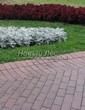 Садовая дорожка из тротуарной плитки (цветная бетонная: розовая, красноватая, кирпичного цвета) - 114
