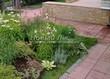 Садовая дорожка из тротуарной плитки (цветная бетонная: розовая, красноватая, кирпичного цвета) - 117
