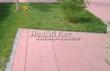 Садовая дорожка из тротуарной плитки (цветная бетонная: розовая, красноватая, кирпичного цвета) - 125