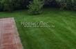 Садовая дорожка из тротуарной плитки (цветная бетонная: розовая, красноватая, кирпичного цвета) - 128