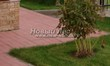 Садовая дорожка из тротуарной плитки (цветная бетонная: розовая, красноватая, кирпичного цвета) - 134