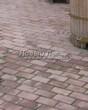 Садовая дорожка из тротуарной плитки (цветная бетонная: розовая, красноватая, кирпичного цвета) - 146
