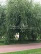 Садовая дорожка из тротуарной плитки (цветная бетонная: розовая, красноватая, кирпичного цвета) - 147