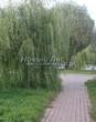 Садовая дорожка из тротуарной плитки (цветная бетонная: розовая, красноватая, кирпичного цвета) - 148