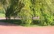 Садовая дорожка из тротуарной плитки (цветная бетонная: розовая, красноватая, кирпичного цвета) - 149