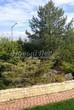 Садовая дорожка из тротуарной плитки (цветная бетонная: розовая, красноватая, кирпичного цвета) - 150