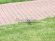 Садовая дорожка из тротуарной плитки (цветная бетонная: розовая, красноватая, кирпичного цвета) - 153