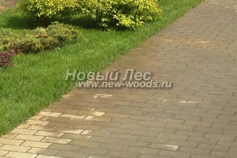 Садовая дорожка из бетона (темная тротуарная плитка)