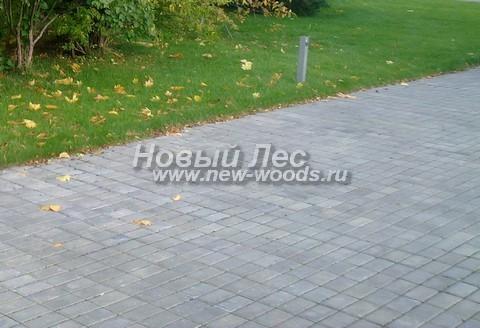 Садовая дорожка с плиткой из бетона: простая укладка рядами, невидимый бордюр укрыт подведённым газоном