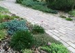 Садовая дорожка из бетона (темная серая тротуарная плитка) - 110
