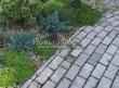 Садовая дорожка из бетона (темная серая тротуарная плитка) - 113