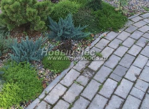 Садовая дорожка, в которой при укладке плитки использован сдвиг на половину длины, а конструкция дорожки удерживается от разваливания бетонными бордюрами