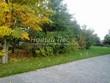 Садовая дорожка из бетона (темная серая тротуарная плитка) - 115