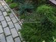 Садовая дорожка из бетона (темная серая тротуарная плитка) - 126