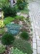Садовая дорожка из бетона (темная серая тротуарная плитка) - 134