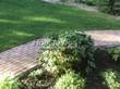 Садовая дорожка из бетона (темная серая тротуарная плитка) - 135