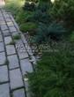 Садовая дорожка из бетона (темная серая тротуарная плитка) - 145