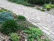 Садовая дорожка из бетона (темная серая тротуарная плитка) - 150