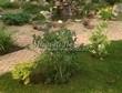 Садовая дорожка из бетона (темная серая тротуарная плитка) - 152