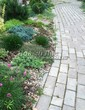 Садовая дорожка из бетона (темная серая тротуарная плитка) - 154