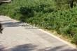 Бетонная садовая дорожка (светлая тротуарная плитка, брусчатка) - 101