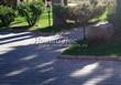 Бетонная садовая дорожка (светлая тротуарная плитка, брусчатка) - 116