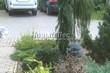 Бетонная садовая дорожка (светлая тротуарная плитка, брусчатка) - 121