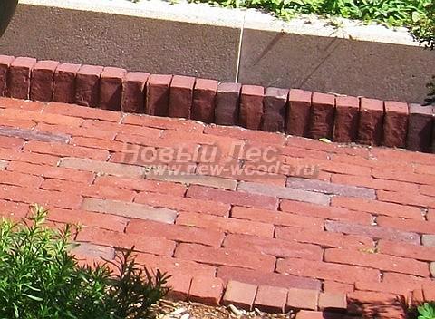 Узкая садовая дорожка для прохода одного человека (около 70 см): красный кирпич уложен простыми рядами со сдвигом на полкирпича, конструкция усилена высоким бетонным бордюром