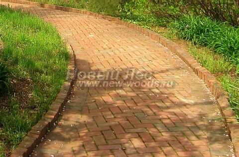 Садовая дорожка для прохода двух человек: желтоватый кирпич уложен в рисунок «ёлочка», а роль бордюра выполняют кирпичи, поставленные на ребро