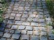 Садовая дорожка из гранитной брусчатки - 102