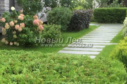 Широкая дорожка из серого гранита является украшением декоративного сада возле загородного дома