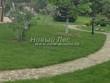 Садовая дорожка из плитняка (швы заделаны цементом) - 103