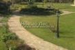 Садовая дорожка из плитняка (швы заделаны цементом) - 115