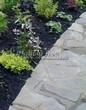Садовая дорожка из плитняка (швы заделаны цементом) - 116
