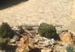 Садовая дорожка из плитняка (швы заделаны цементом) - 129