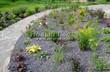 Садовая дорожка из плитняка (швы заделаны цементом) - 132