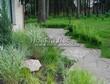 Садовая дорожка из плитняка (швы заделаны цементом) - 134