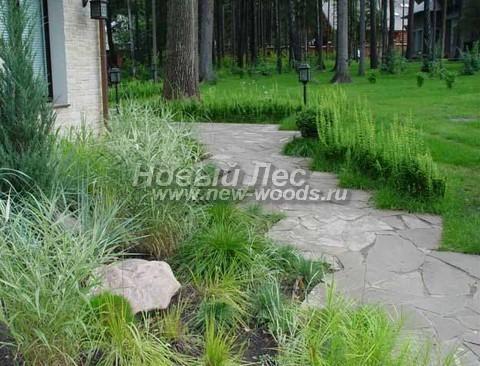 Дорожке из плитняка, уложенной на бетонное основание с цементом, можно придать любой декоративный вид, который украсит сад
