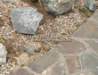 Садовая дорожка из плитняка (швы заделаны цементом) - 140