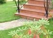 Садовая дорожка из плитняка (швы заделаны цементом) - 154