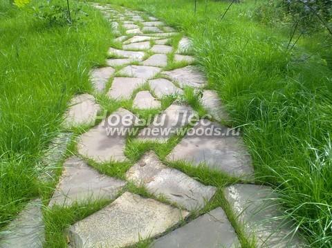 Садовая дорожка из плитняка (швы с травой)
