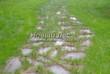Садовая дорожка из плитняка (камень-пластушка, швы с травой) - 101