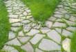 Садовая дорожка из плитняка (камень-пластушка, швы с травой) - 103