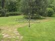 Садовая дорожка из плитняка (камень-пластушка, швы с травой) - 110