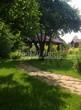 Садовая дорожка из плитняка (камень-пластушка, швы с травой) - 120