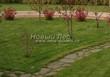 Садовая дорожка из плитняка (камень-пластушка, швы с травой) - 121